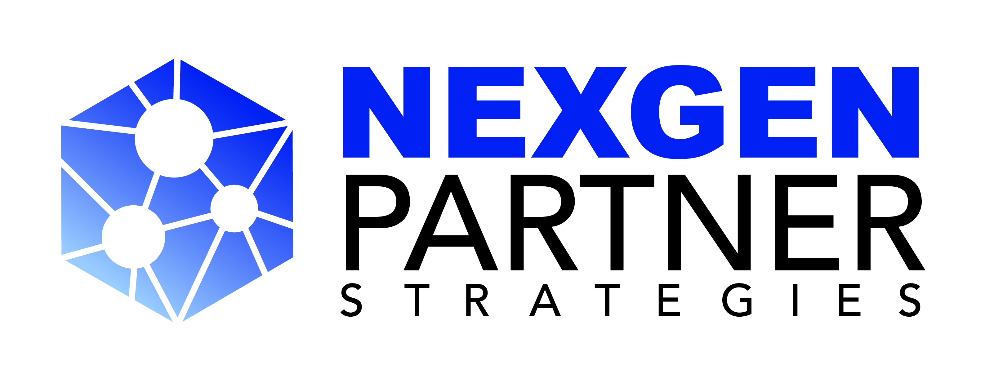 Nexgen Partner Strategies